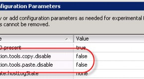 VMWare, how to enable copy&paste from console